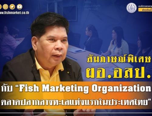 ผู้อำนวยการองค์การสะพานปลา (อสป.) ให้สัมภาษณ์พิเศษประเด็น เปิดท่าเทียบเรือและตลาดประมงอ่างศิลา จังหวัดชลบุรี